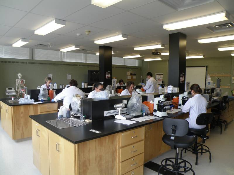 how to become a medical laboratory technician in australia